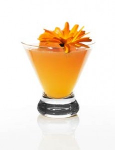 Marigold Ofrenda Cocktail with Espolon Tequila