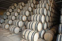 oak barrels used to age tequila