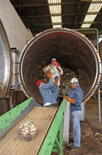 workers load agave piñas into an autoclave at the sangre azteca tequila factory